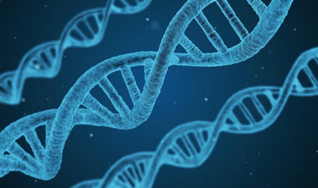 Understanding Diabetes and Genetics